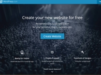 Here's what you see at WordPress.com