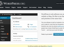 Here's what you see at WordPress.org, although you may not see this screen if your host has a one-click install.