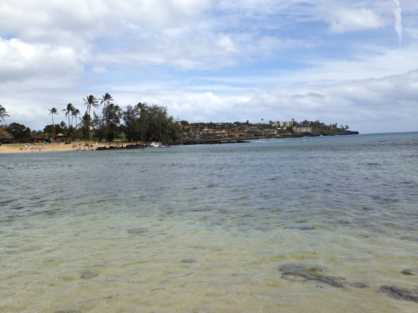 I Went to Hawaii forWork