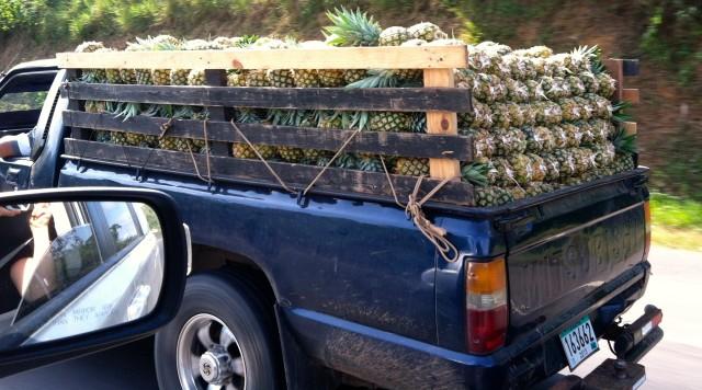 Pineapple truck